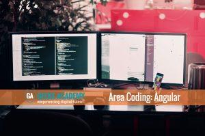 geeks-academy-corso-angular-area-coding